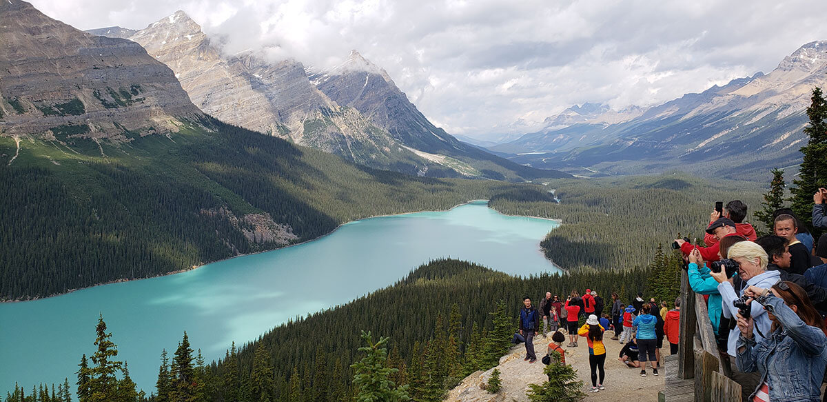 RTB Tours Peyto Lake